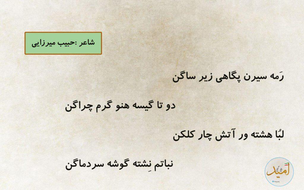 حبیب میرزایی