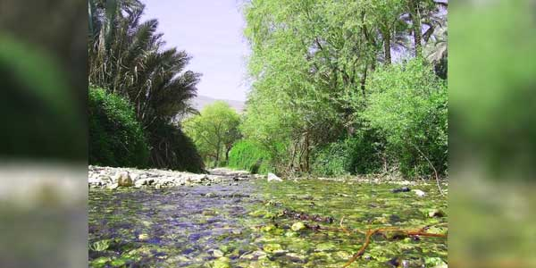 فاریاب جنوب کرمان فاریاب موردان تنگ آبشوئیه