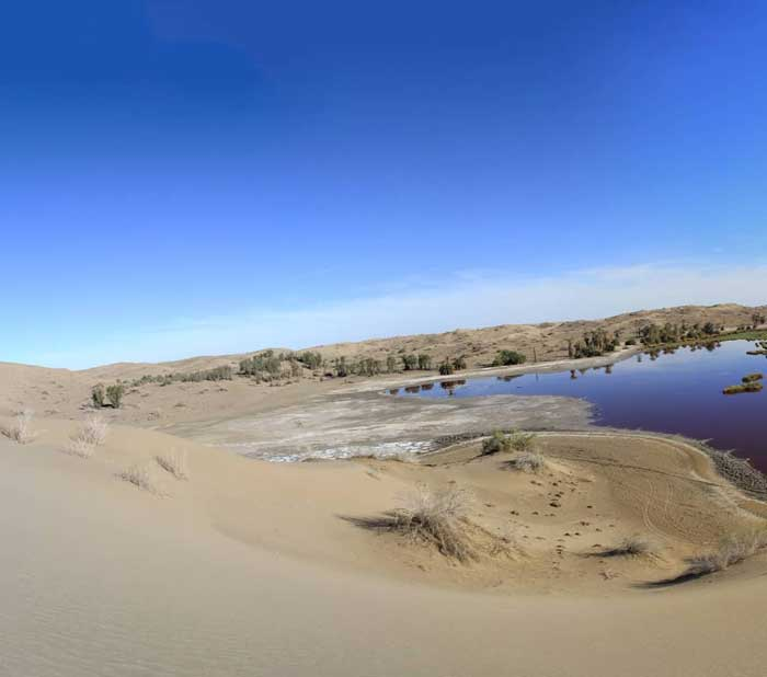 چشمه گلپورگو