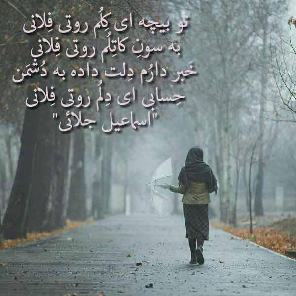فرهنگ شاعران جنوب کرمان